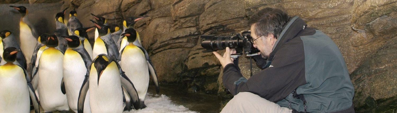 Rob Doolaard Dieren- en Natuurfotografie