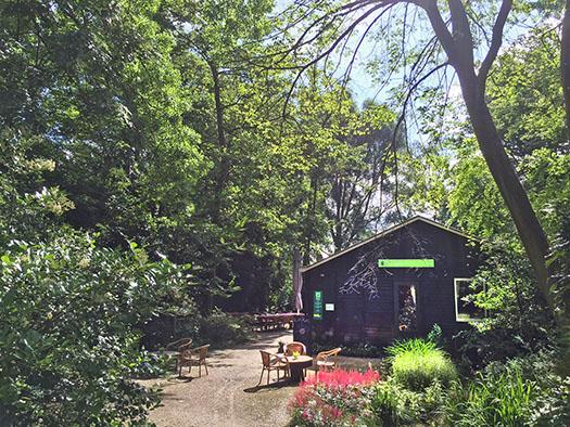 Theehuis Trompenburg Tuinen & Arboretum Honingerdijk 86 (beneden)
